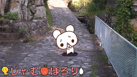 blogkiji190715.jpg