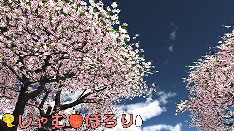 porori210620.jpg