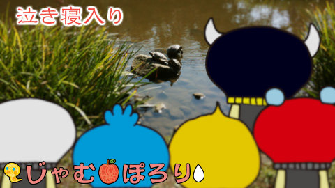 porori210626.jpg