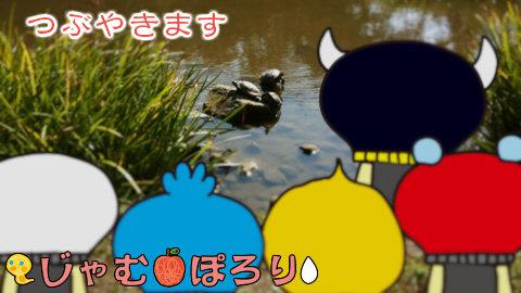 porori210806.jpg