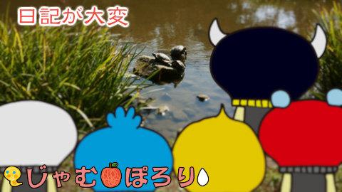 porori210807.jpg