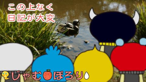 porori210809.jpg