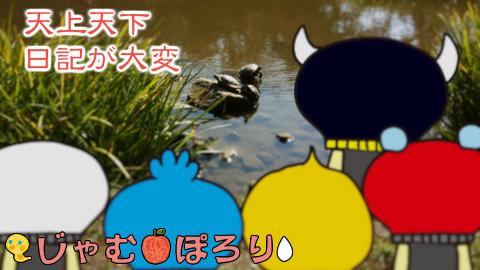 porori210815.jpg