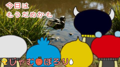 porori210829.jpg