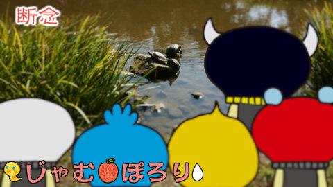porori210913.jpg